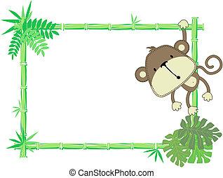 csecsemő, csinos, keret, majom