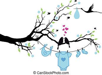 csecsemő fiú, vektor, madarak, fa