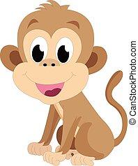 csecsemő majom, ábra
