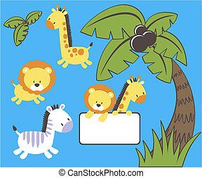 csecsemő, vektor, dzsungel