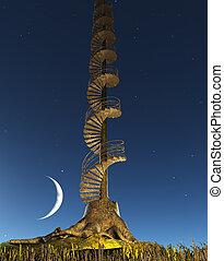 csikk, lépcsőház, fa, ég, emelkedik, félhomály, kör alakú