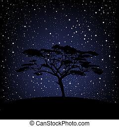 csillagos, felett, fa, éjszaka