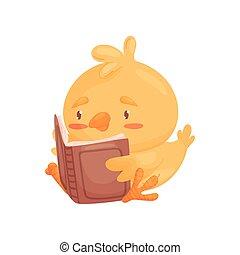 csinos, ábra, háttér., vektor, book., csirke, fehér