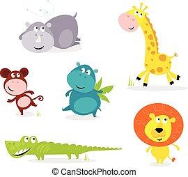 csinos, állatok, hat, -, szafari, zsiráf