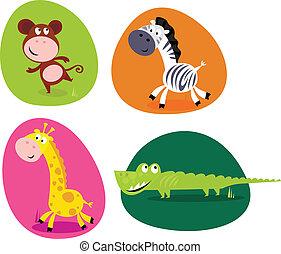 csinos, állhatatos, állatok, -, monkey.., szafari