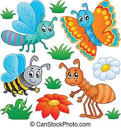 csinos, 2, rovar, gyűjtés