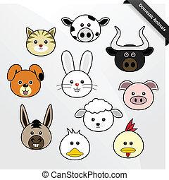 csinos, belföldi, karikatúra, állat