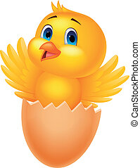 csinos, belső, tojás, repedt, madár