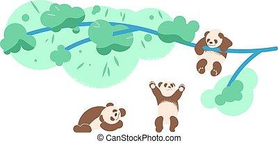 csinos, hordoz, fa, csecsemő, mászó, panda