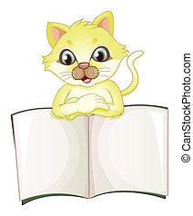 csinos, nyílás, sárga macska, könyv, üres