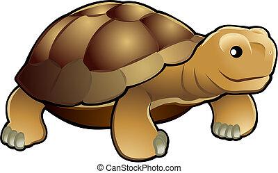 csinos, teknősbéka, ábra, vektor