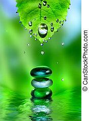 csiszol, levél növényen, víz, kiegyensúlyozott, háttér, ásványvízforrás, zöld, savanyúcukorka, fényes