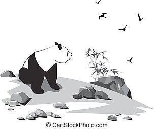csiszol, panda, madarak