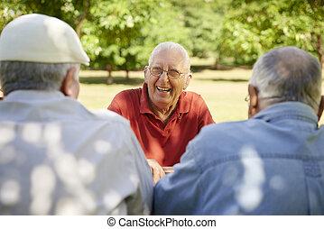 csoport, férfiak, liget, nevető, móka, idősebb ember, birtoklás