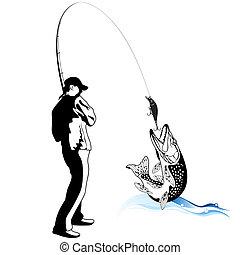 csuka, elkapott, halász