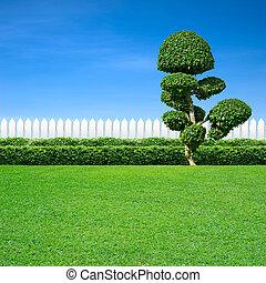díszítő, fehér, fa, kerítés