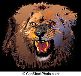 dühös, oroszlán