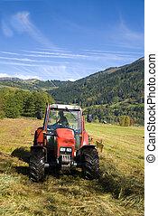 day., napos, ősz, mező, szántás, traktor