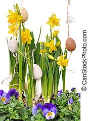 dekoráció, nárciszok, húsvét