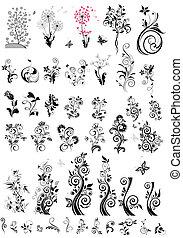 dekoratív, floral elem, tervezés, (