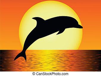 delfin, árnykép