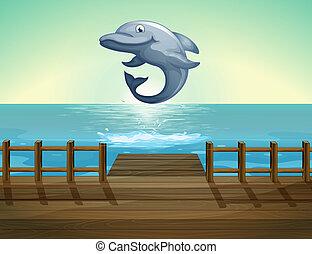 delfin, tenger, ugrás, rév