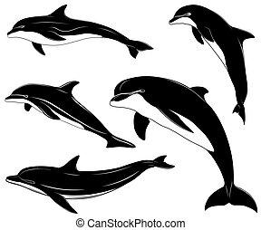 delfinek, állhatatos, gyűjtés, tetovál