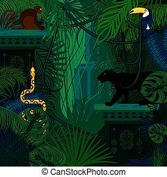 detektívek, állatok, háttér., vektor, rainforest, vad