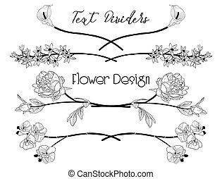 dividers., virág, szöveg, vektor, fekete, floral tervezés, alapismeretek
