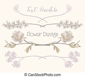 dividers., virág, szöveg, vektor, tervezés, floral elem