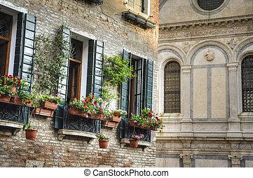 doboz, virág, olaszország, velence