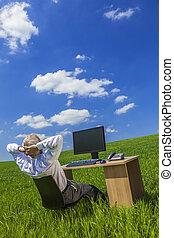 dolgozó, ügy, üzletember, ember, íróasztal, zöld terep