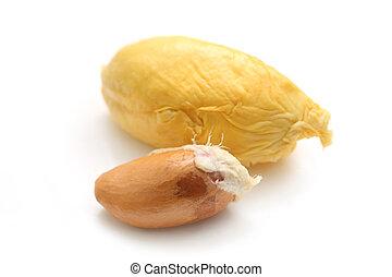 durian, hús
