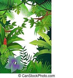 dzsungel, háttér