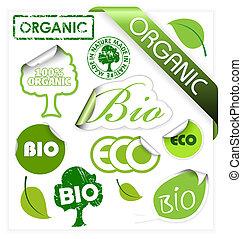 eco, állhatatos, alapismeretek, szerves, bio