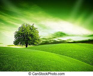 eco, bolygó, zöld