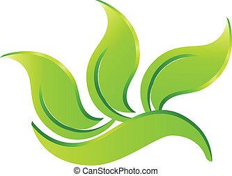 eco, jel, zöld