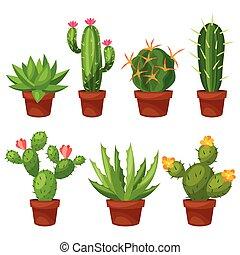 edény, elvont, virág, kaktusz, gyűjtés