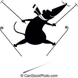 egér, ábra, karikatúra, vagy, patkány, síelő