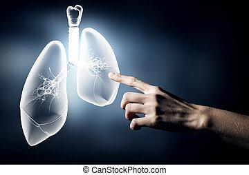 egészség, tüdő