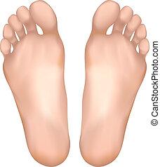 egészséges, feet.