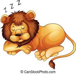 egyedül, csinos, oroszlán, alvás