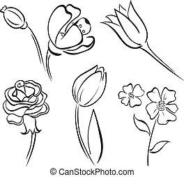egyenes, virág, művészet