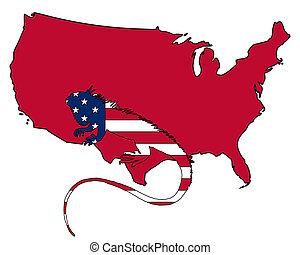 egyesült államok, egyesült, amerika, iguana