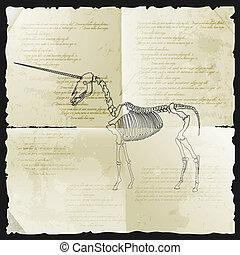 egyszarvú, csontváz, ősi