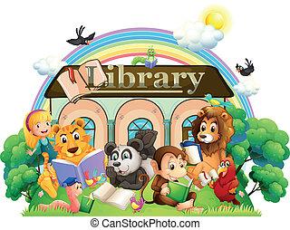 elülső, felolvasás, állatok, könyvtár