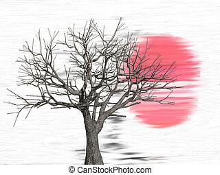 elülső, napnyugta, fa