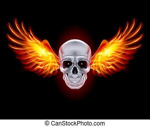elbocsát, wings., koponya