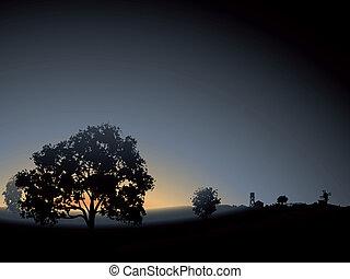 elhagyott, fa, mist., reggel
