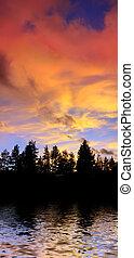 elhomályosul, felül, fa, tó víz, körvonal, gondolkodás, napnyugta, tahoe, kalifornia, piros